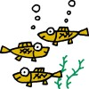 魚にも論理的思考力=従来の定説覆す―大阪市立大