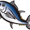 クロマグロ:禁漁訴え釣り人らデモ