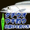 【初心者向け】タチウオのウキ釣り、仕掛けと釣り方の解説