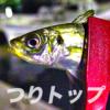 釣り初心者も簡単、アジ釣り仕掛け集を紹介