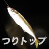 【釣り初心者の疑問】投げ釣りで、アジは釣れないのですか?