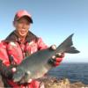 【釣り動画】2016 シマノ磯動画 『野性を解き放つ旅』 BASIS BB-X DESPINA × 田中修司編