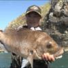 【釣り動画】南半球に冴えわたるフカセ釣りの名人