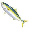 【カゴ釣り講座】スリリングなスピードスター、カゴ釣りの青物狙いを教えて