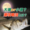 【シーバス初心者】大潮or小潮?潮別シーバス攻略法とは?