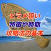 【ルアー初心者】ルアーのヒラメ釣り、特徴やシーズンを知ろう!