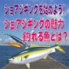 ショアジギングを始めよう!ショアジギングの魅力、ショアジギングで釣れる魚とは?