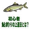 【鮎釣り初心者】鮎釣りの上達法とは?