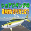 【ルアー初心者必見!】ショアジギングの基本的な釣り方とは?