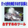 釣った魚を神経締めする効果と、おすすめのツールを紹介