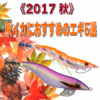 《2017秋》秋イカにおすすめのエギ5選